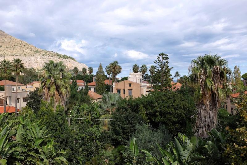 roofgarden view