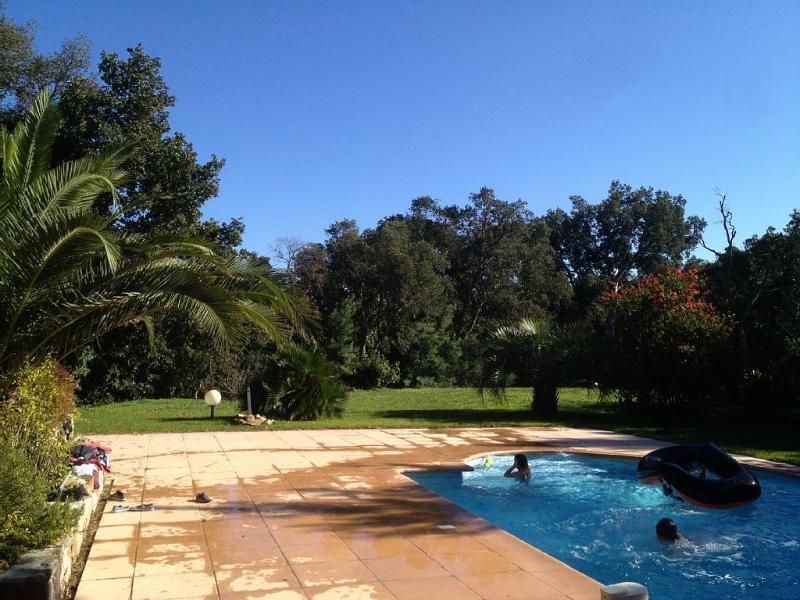 Plaisir dans la piscine !