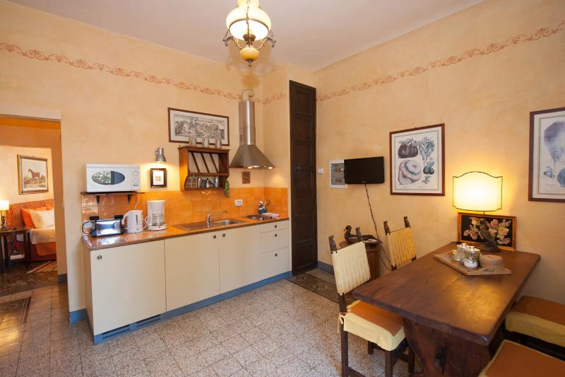 Maria - Apartment facing large terrace, vacation rental in Florence
