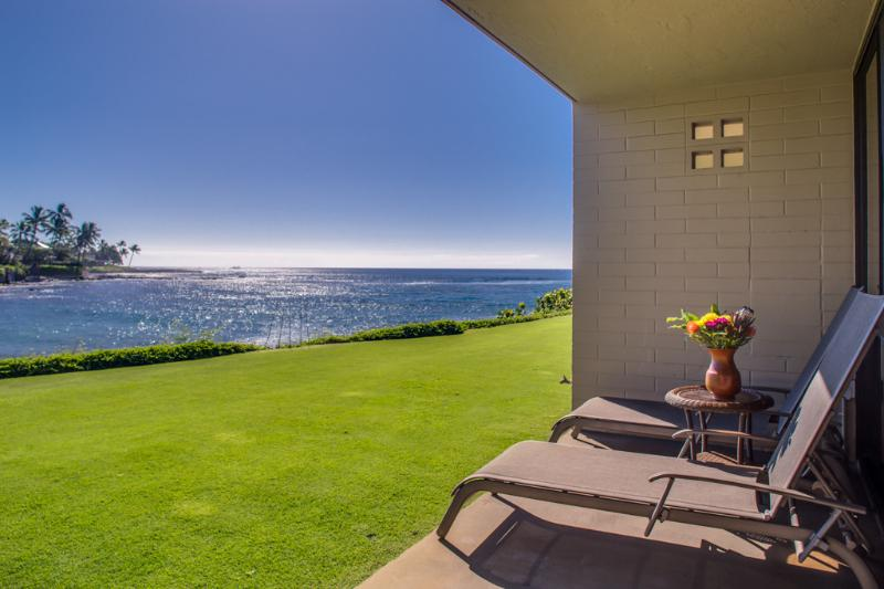 Relax and enjoy the view. Watch the whales swim by