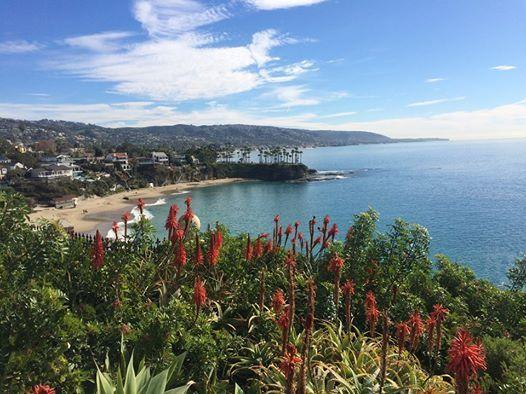 View of one of Laguna's beaches.  Downtown is a 12 minute walk from our rental