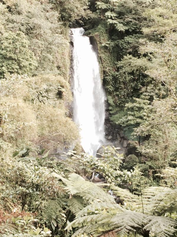 Trafalgar Cachoeira do mirante - 5 minutos até trilha, 5 minutos a pé até o mirante.