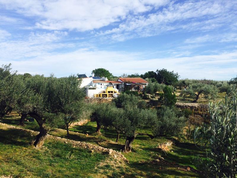 Panoramica Casa Rural Villafeliche