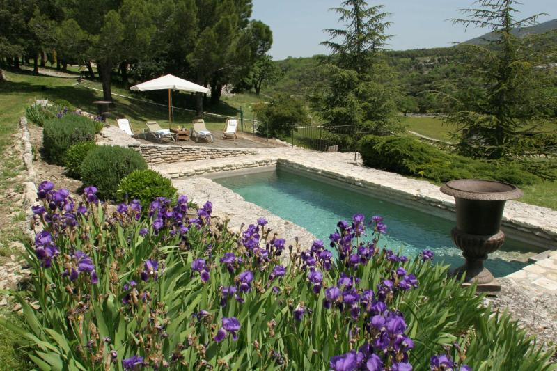 Mas Coté Sud, holiday rental in Buoux