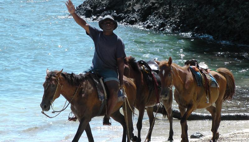 Tome un paseo a caballo de liesurely a lo largo de la playa.