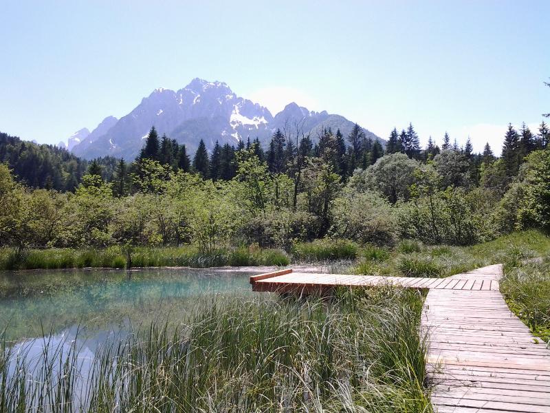 Zelenci - hermosa excursión