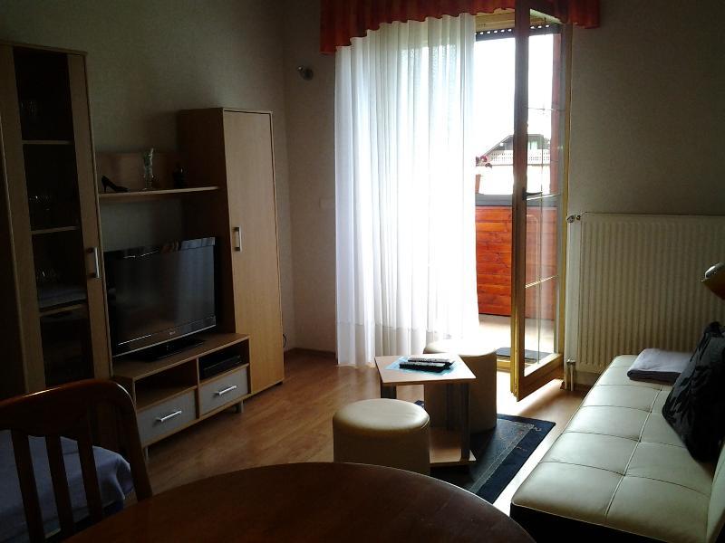 Apartamento balcón sala Nº 1