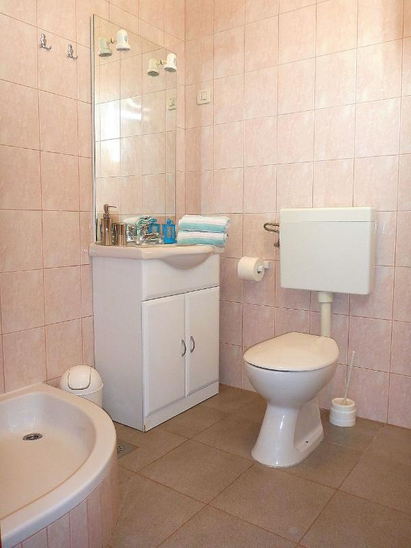 A1 Plavi(2+2): bathroom with toilet
