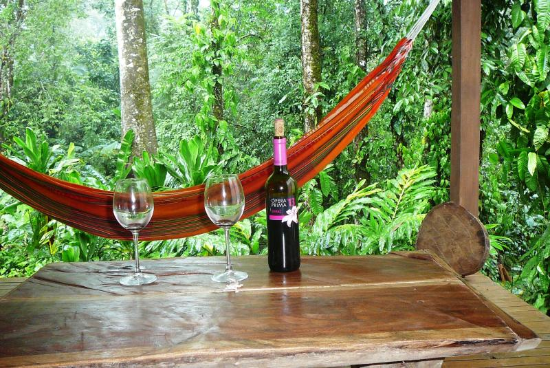 Casa Lina Eco Lodge exotic jungle apartment with sloth and iguana view, location de vacances à Cocles