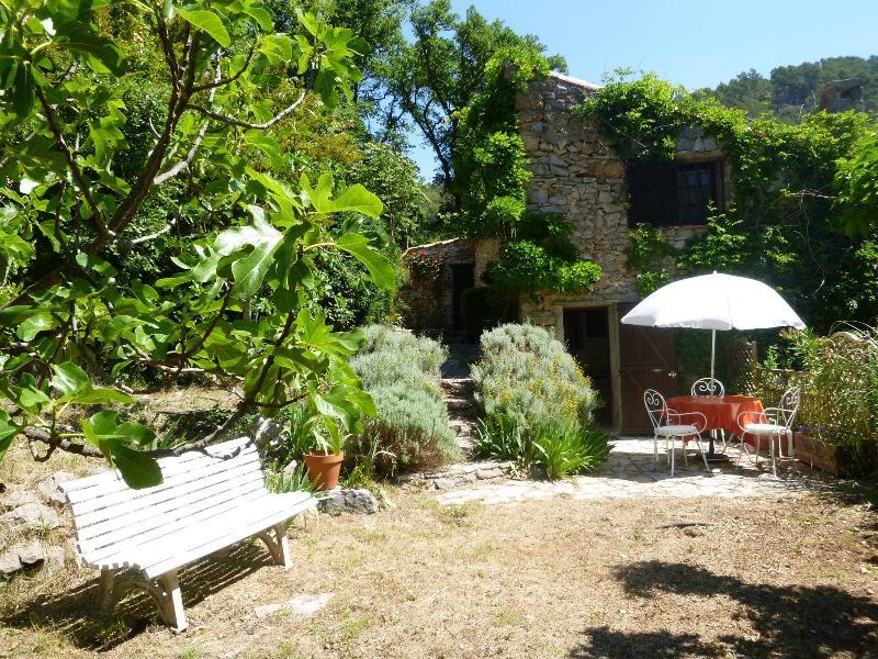 Le Moulin de la Sauvagie, casa vacanza a Flayosc