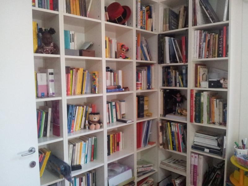 Bookcase in the second Bedroom