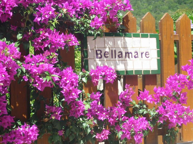 Bellamare at Mahoe Bay, Virgin Gorda, holiday rental in Spanish Town