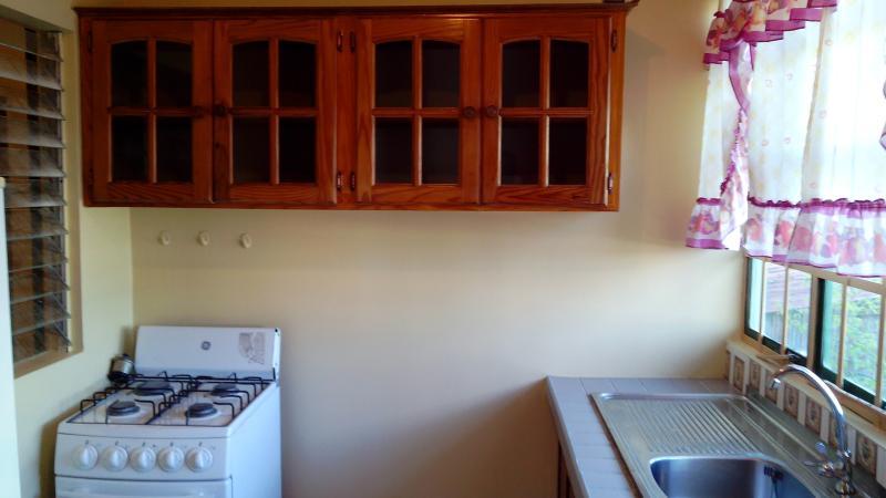 armarios de la cocina
