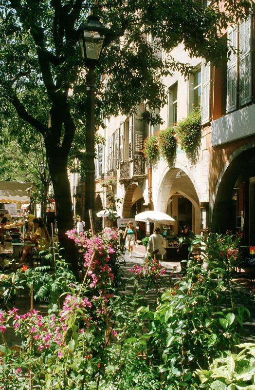 Grasse, instead the areas