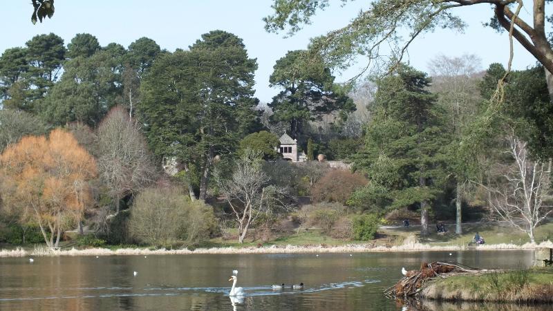 Nearby Mt.Stewart gardens in spring