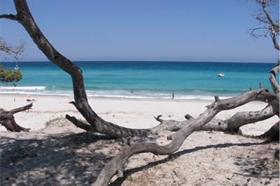 Beach of Saleccia