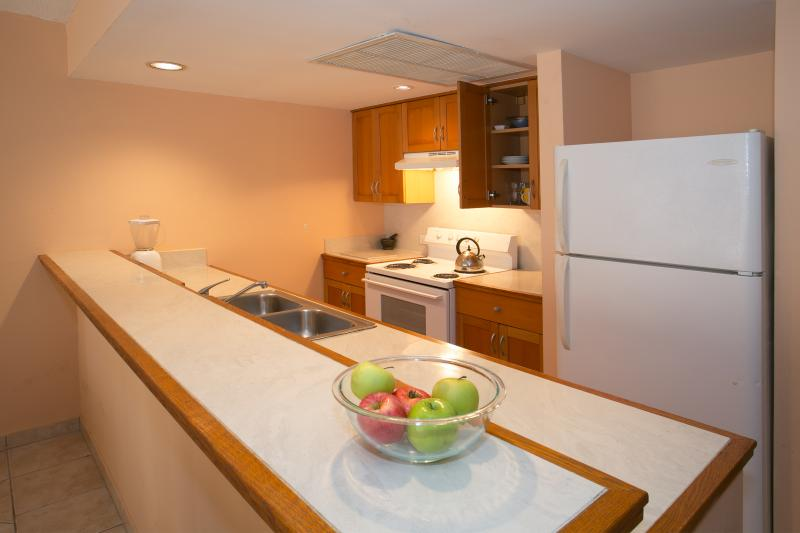 Fully equipped kitchen with bar.