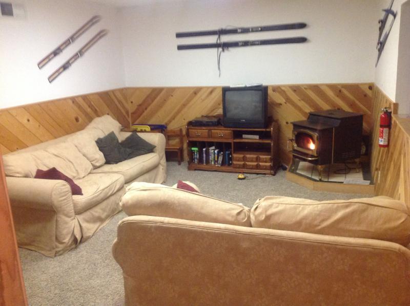 Bonus rec room with pellet stove