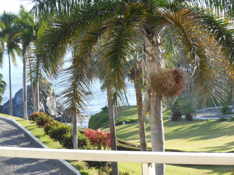 Beautiful views from the huge terrace of ocean and tropical gardens.