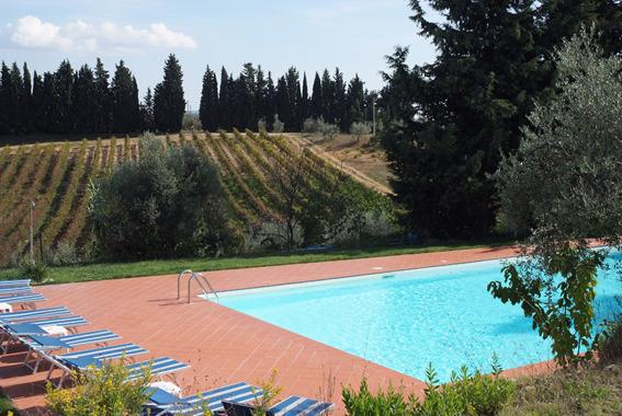 pool overlooking vineyards