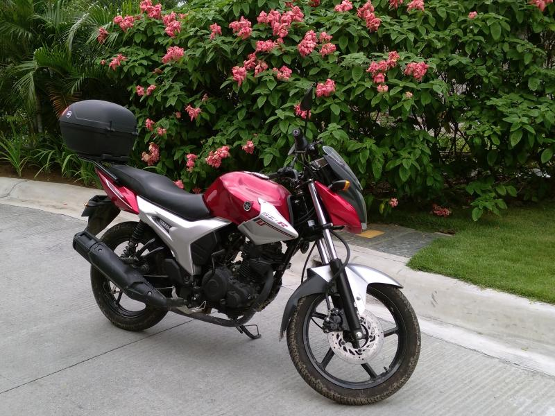 Yamaha 155 cc bike available to rent with covered parking included