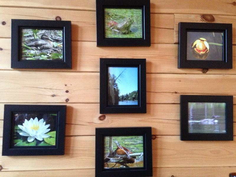 Photos on our wall from around the lake