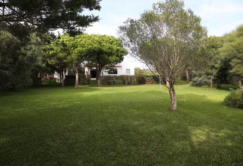 Jardin zona2