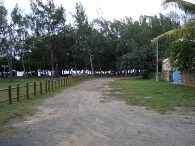 local beach area