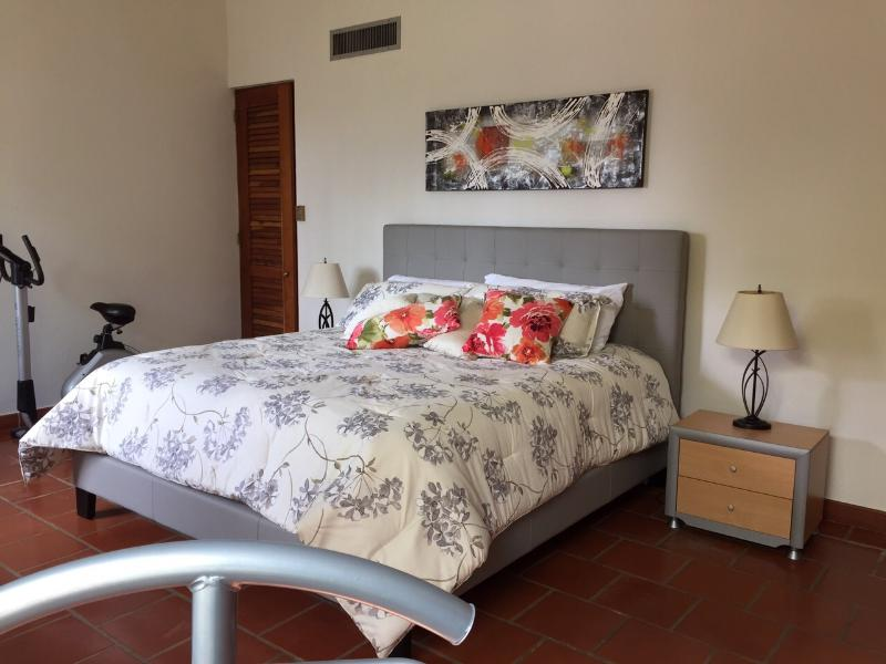 Master bedroom with a King size bed, private bathroom and walk-in closet