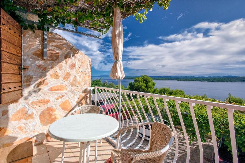 Villa Cincilograd - Zavala, Hvar, holiday rental in Zavala