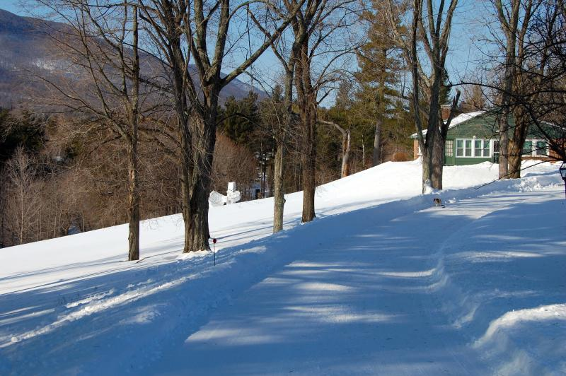 tranquil private driveway to innkeepers cottage