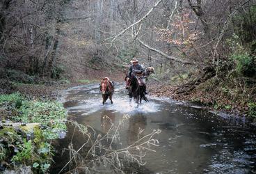 trekking a cavallo in Val di Farma