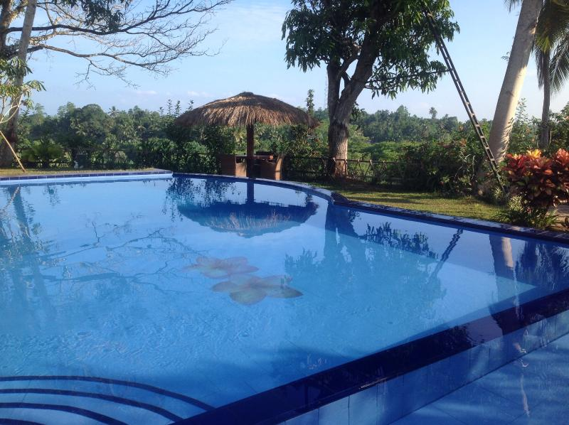Swimming pool, overlooking one of the cabanas and paddy fields below