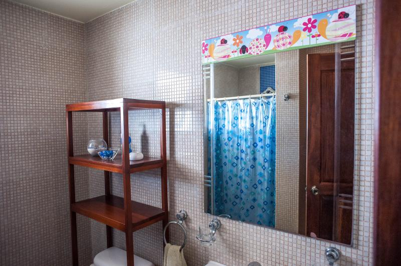 segundo baño con ducha y toilette