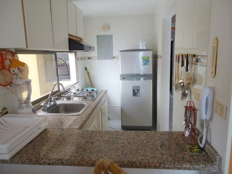 Cocina con microondas - Kitchen with microwave