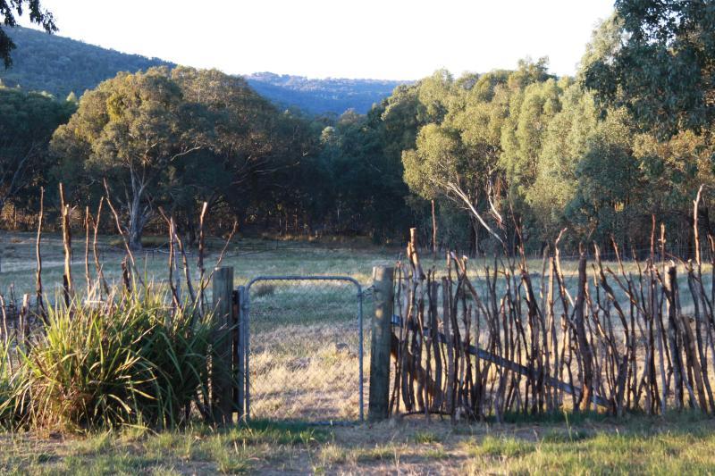 vista desde el frente de Candlebark Retreat