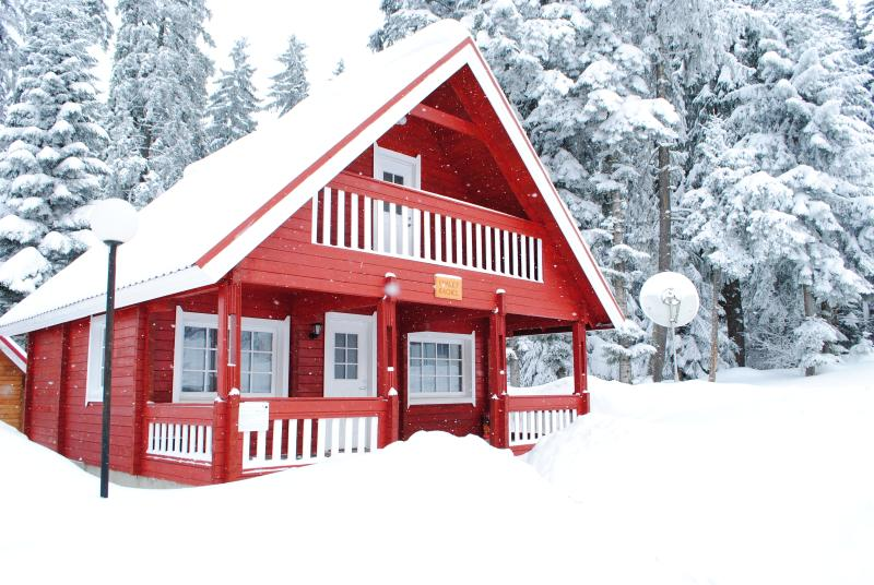 Beautiful chalet with Sauna in centre of Borovets, vacation rental in Borovets