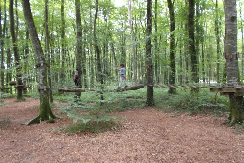 La Foret Villecartier with zip wire and tree climbing park