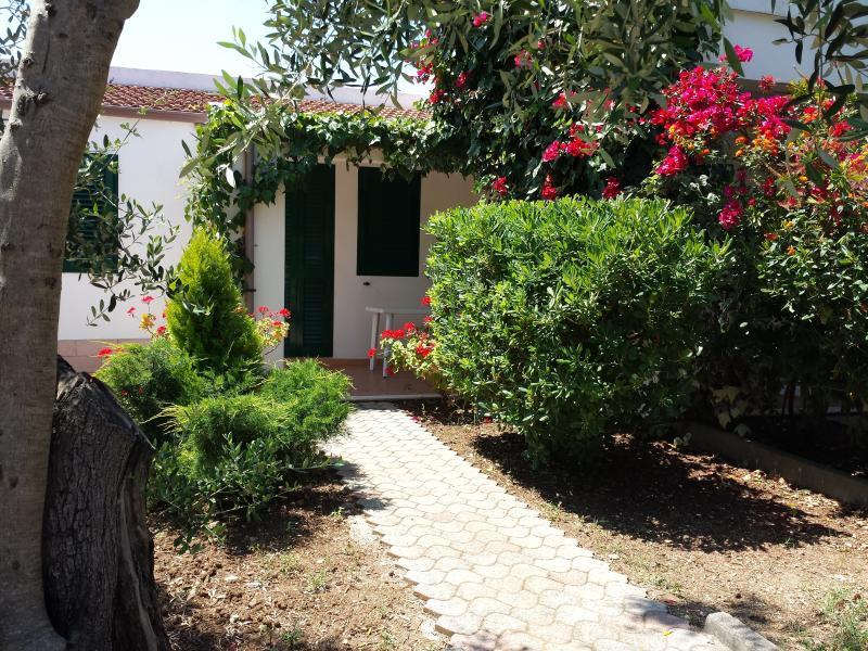 Residence Alba Vieste Gargano Trilo, vacation rental in Vieste