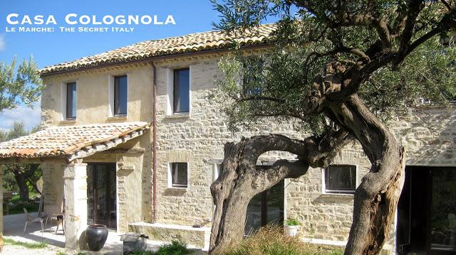 The original stone facade and two of our 28 olive trees.