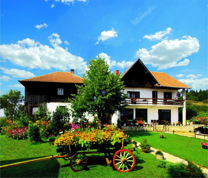 Smestaj na Goliji - Vila Selana, holiday rental in Central Serbia
