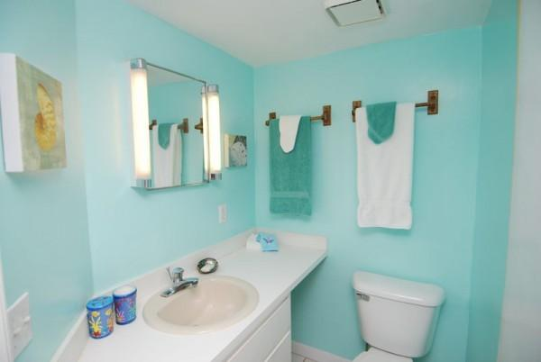 guest batch with shower. opens to common hallway across from guest bedroom