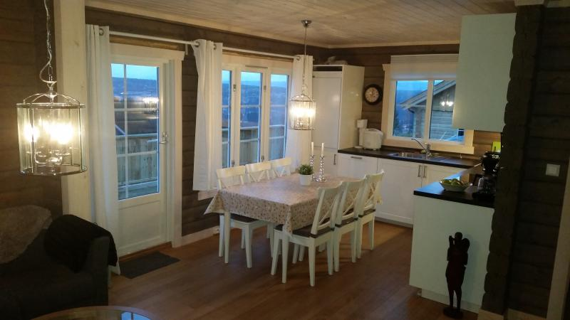 Cottage for skiing, natur, Kongsberg jazzfestival, holiday rental in Eastern Norway