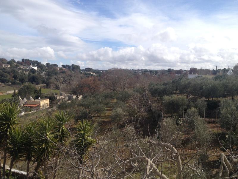 VILLA AGNESE, vacation rental in Locorotondo