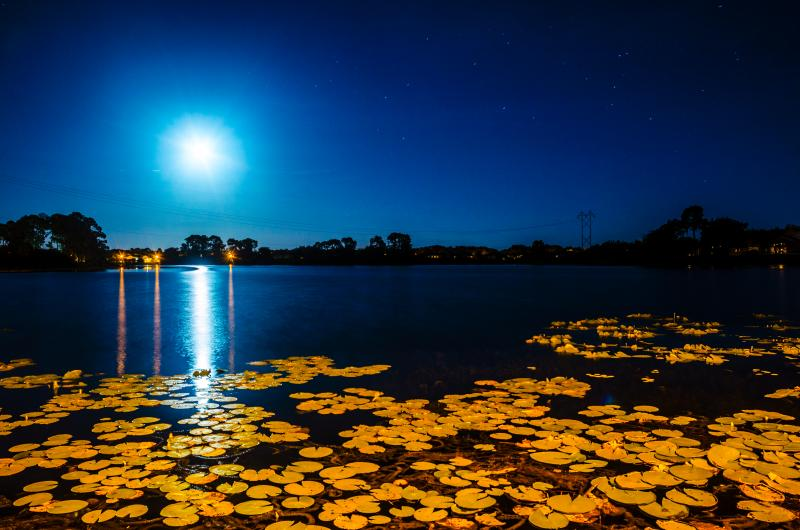 Moonlight at Lake Thomas Villa