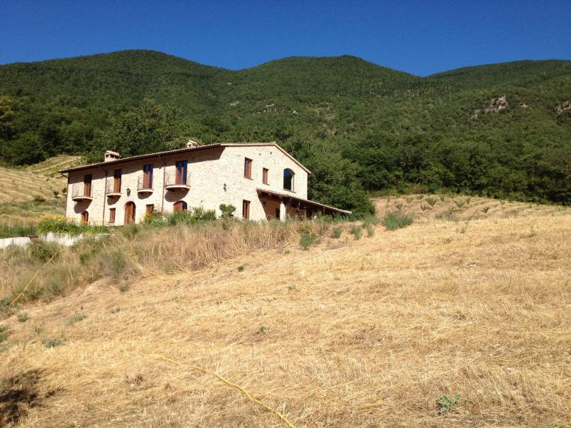Località il Piano farmhouse viewed from the west, late summer