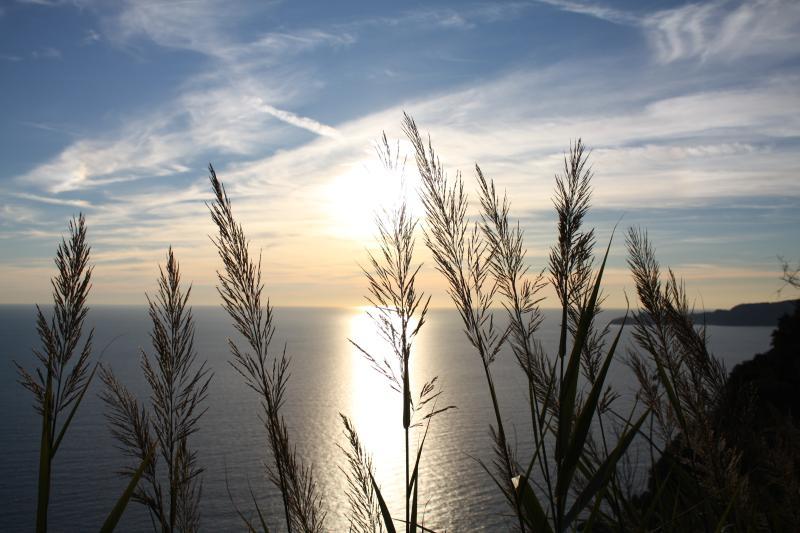 il mare di Lavagna