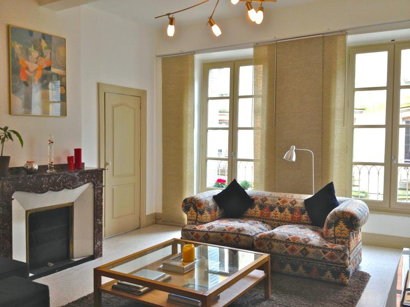 Stylish apartment, prime location, roof terrace, holiday rental in Carcassonne Center