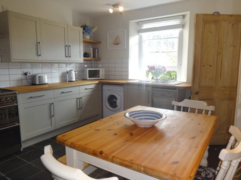 die schöne Wohnküche mit Blick auf das Küchenfenster