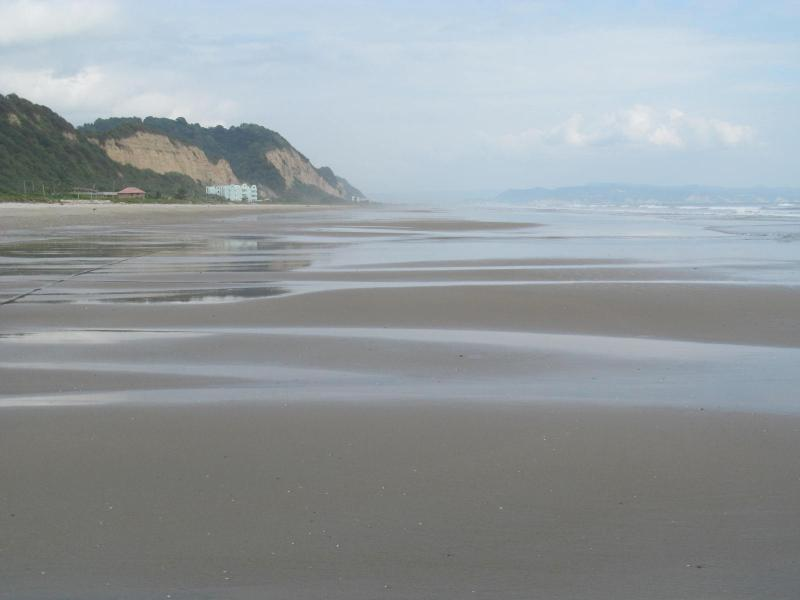 guardando verso sud in direzione di Azul (verde) in un giorno nebuloso a bassa bassa / marea-the bldg da allora è stato dipinto abbronzatura